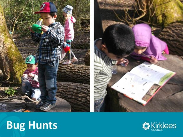 We find bugs living in our local woodland and open spaces then use our special magnifiers to see them up close and personal. Photo credit: Kirklees Libraries