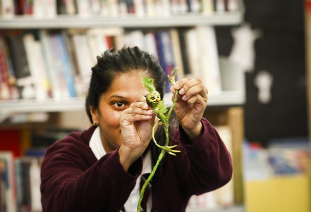 A school girl playing with a Tree Child in the library.