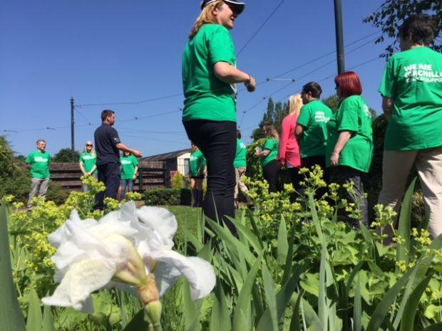 Lots of people wearing macmillan green tshirts, walking in a garden